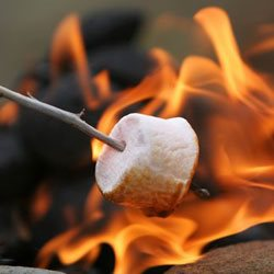 Marshmellows over the fire
