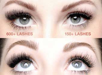 American Volume Lashes