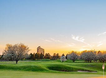 Spring and Cherry Blossoms on the Course 340x250