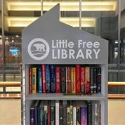 Resort Launches Little Free Library